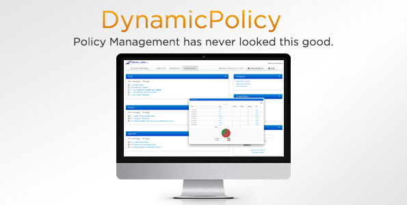DynamicPolicy 6